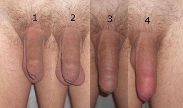 Пухлых увеличения члена в домашних условиях миф или правда попастая брюнетка
